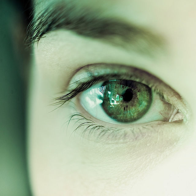 Генетика цвета глаз человека таблица