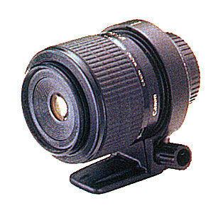 Близкий контакт [макросъемка, фотография, цифровая камера, объектив, штатив, глубина резкости, освещение, макро, полезные советы, линзы, обьективы, макрообьективы, зеркальные камеры]